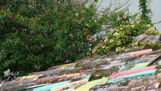 Miramelindo Spa Hotel:                   Sogar am Dach blühte es