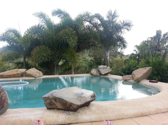 Grasstree Beach Bed & Breakfast:                   pool area