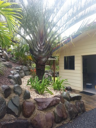 Grasstree Beach, Australia:                   bungalow entrance