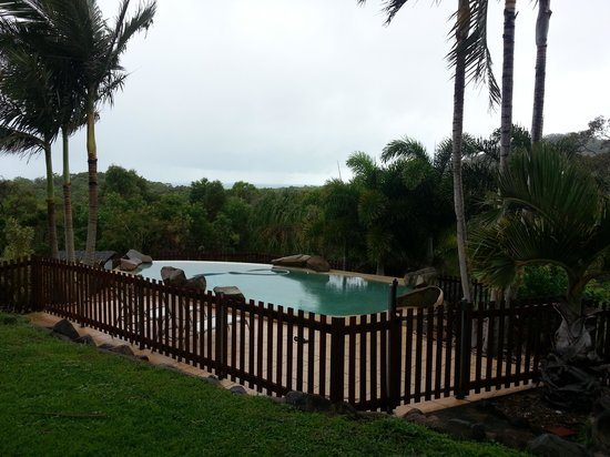 Grasstree Beach Bed & Breakfast:                   pool