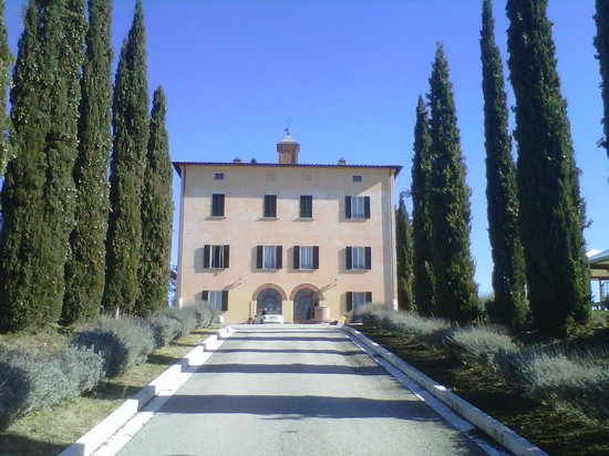 Relais Villa Grazianella - Fattoria del Cerro: vista dal viale d'ingresso