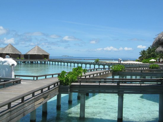 Baros Maldives: Bungalows