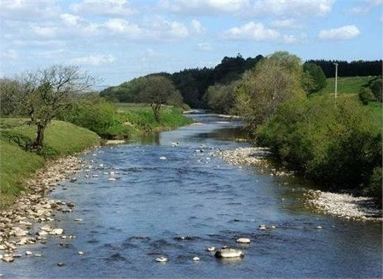 Abbotshaw House - Farm B&B: 1 mile stretch of private river - free fishing
