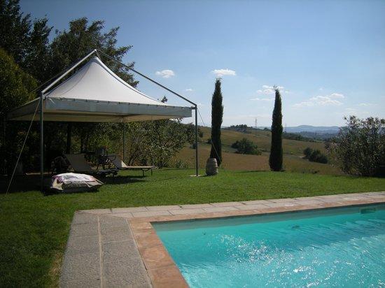 Villa La Lodola:                   Piscina