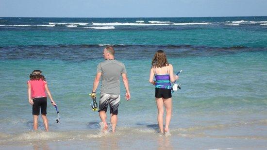 Coconut Bay Beach Resort & Spa:                   Snorkeling