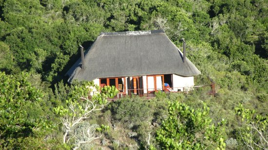 Sebumo Tude Nature's Lounge:                   Chalet 1 und 2