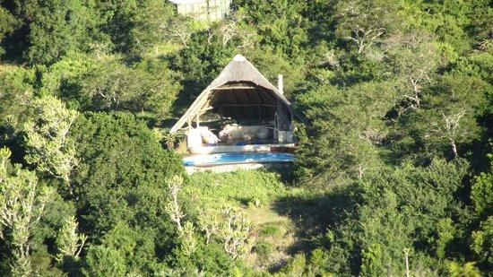 Sebumo Tude Nature's Lounge:                   Pool Oase