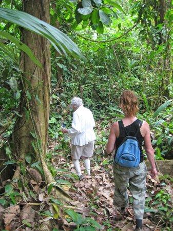 Danta Corcovado Lodge:                   Hiking a Danta trail