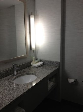 Holiday Inn Express Hotel & Suites Norfolk International Airport:                   Bathroom