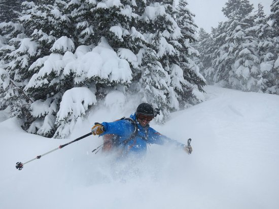 Wild Alpine - Day Tours: Spring Powder!