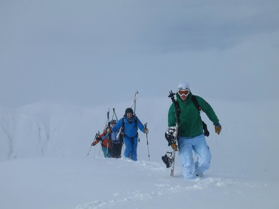 Wild Alpine - Day Tours: Backcountry ski / split board touring in the Chugach Range