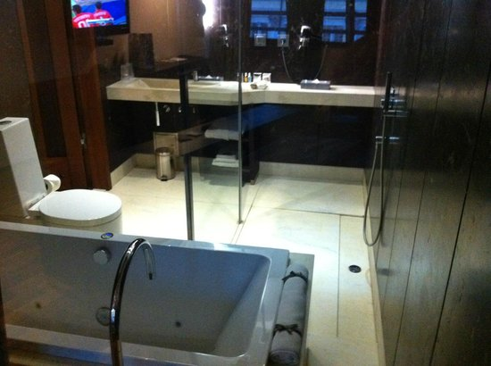 Monopol Hotel: Bathroom's view