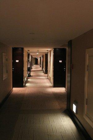 Le Meridien Pyramids Hotel & Spa:                                     Corridor