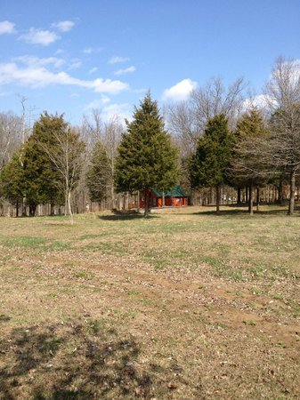Cedar Rock Cabins: Pet romping area, all pets must be leashed for their own safety!