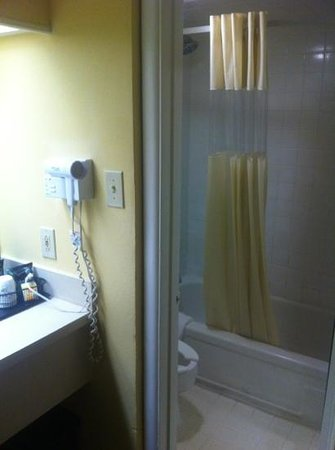 Days Inn San Antonio Alamo/riverwalk: bagno 2