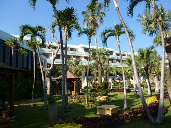 El jardin del hotel picture of sol palmeras varadero tripadvisor - El jardin del sol ...