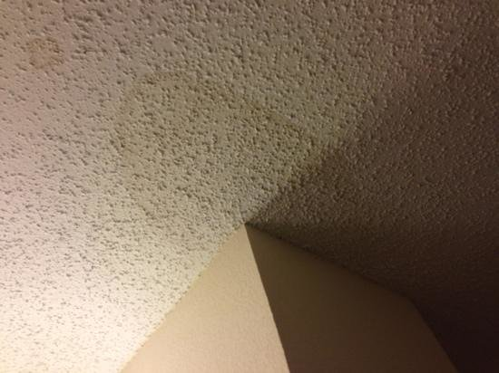 Hilton Fort Worth:                                     stain on ceiling