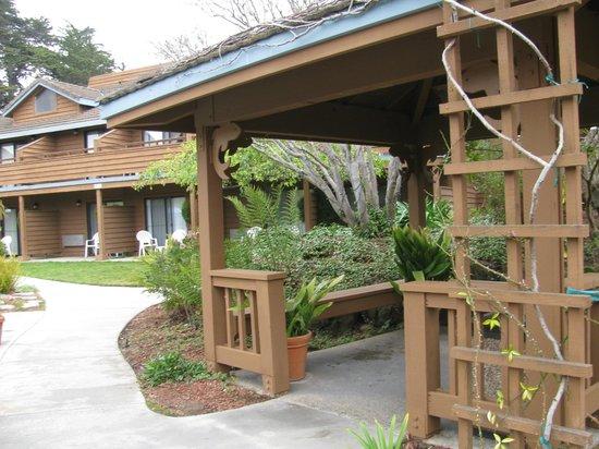 BEST WESTERN Seacliff Inn:                   Cabana?