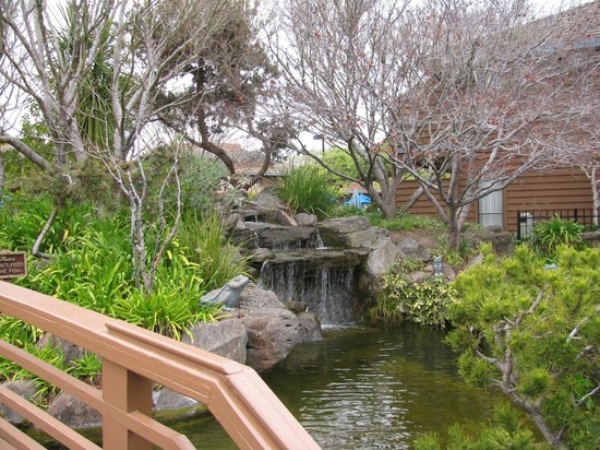 Best Western Seacliff Inn:                   Walking bridge and Koi pond