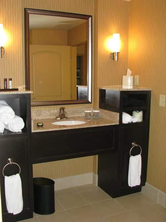 Embassy Suites by Hilton Columbus - Airport :                   Great bathroom