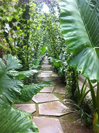 Komune Resort, Keramas Beach Bali:                   path to rooms