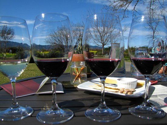 Frog's Leap Winery: Wine tasting on the patio