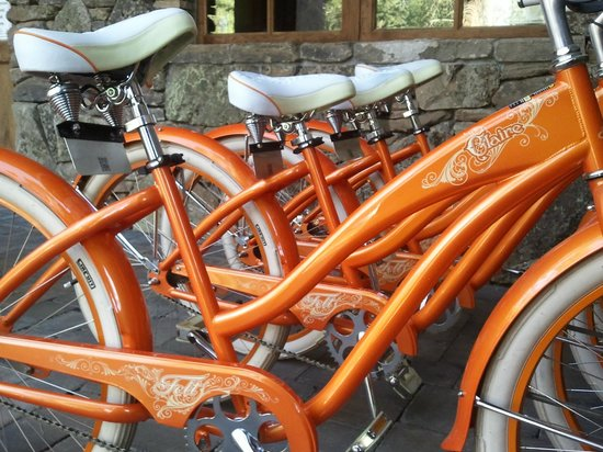 Five Pine Lodge & Spa:                   Cruiser bikes available for use