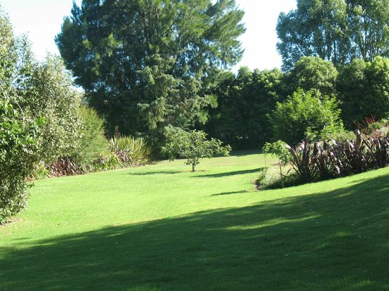 Copsefield Bed and Breakfast:                   Garden area