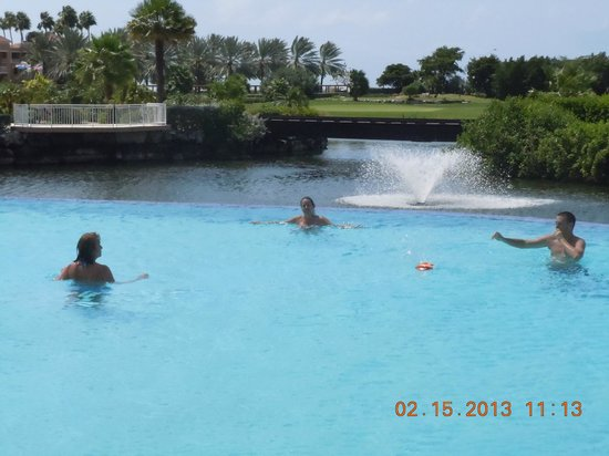 Divi Village Golf and Beach Resort:                   Divi Golf Pool