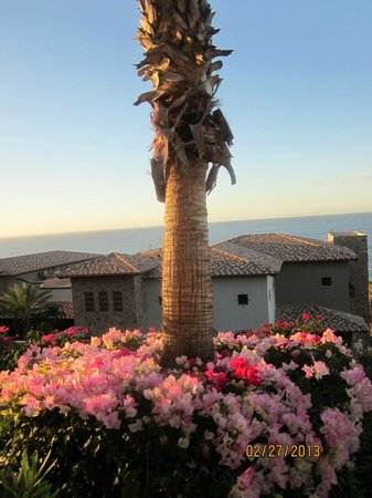 Pueblo Bonito Sunset Beach:                   pretty