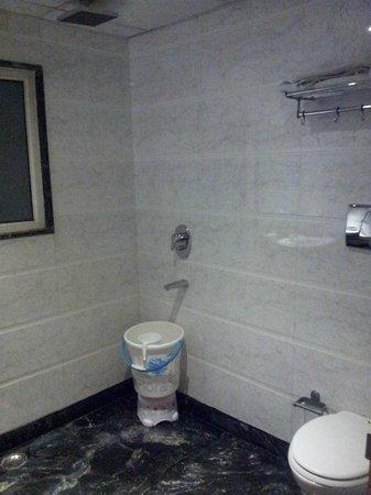 Hotel Krishna:                   Bathroom