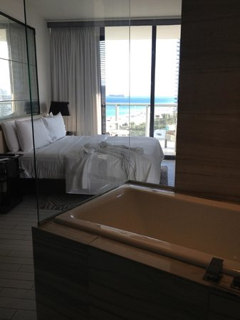 W South Beach:                   Room 1701