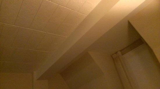 Quality Inn Pittsburgh Airport:                   window and ceiling in guest room