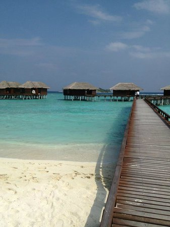 Sheraton Maldives Full Moon Resort & Spa:                   Water Bungalows