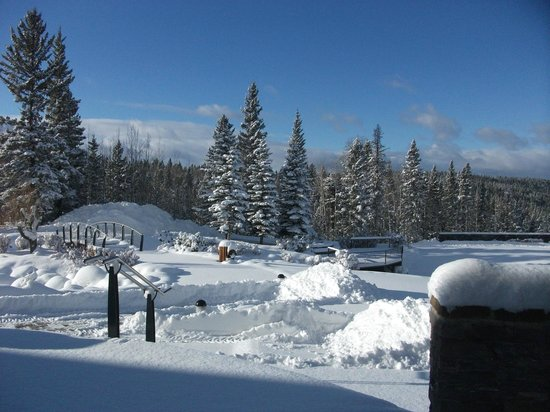Azuridge Estate Hotel: Winter Grounds