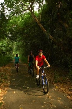 Camayan Beach Resort and Hotel: Bike through the Forest