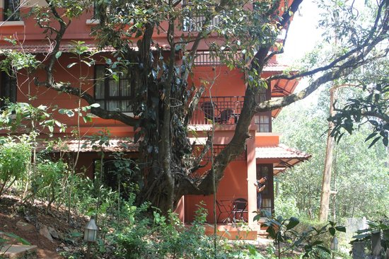 Club Mahindra Madikeri, Coorg:                   Cottage View