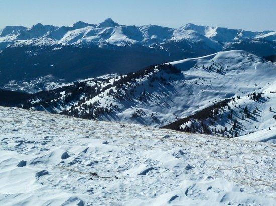 Vail Powder Guides:                   Great views at 11,000+ elevation