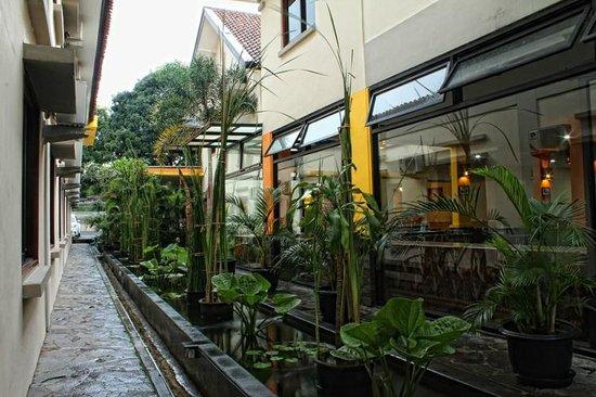 Grha Ciumbuleuit Guest House: Garden