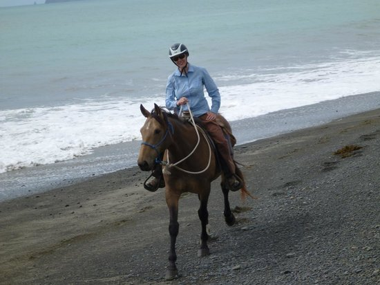 Boutique Horsetreks Day Tours :                   Nugget and me enjoying the beach