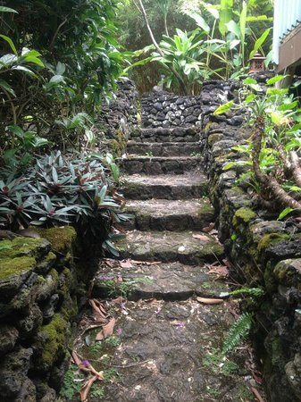 The Guest Houses at Malanai in Hana:                                     Stairway to heaven at Hale Manu