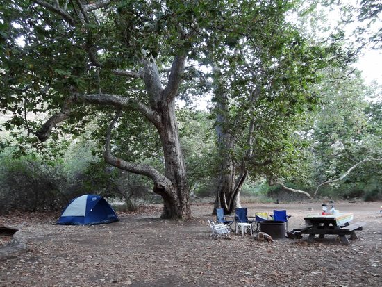 Sycamore Canyon Campground:                   Site 30 under Sycamore trees