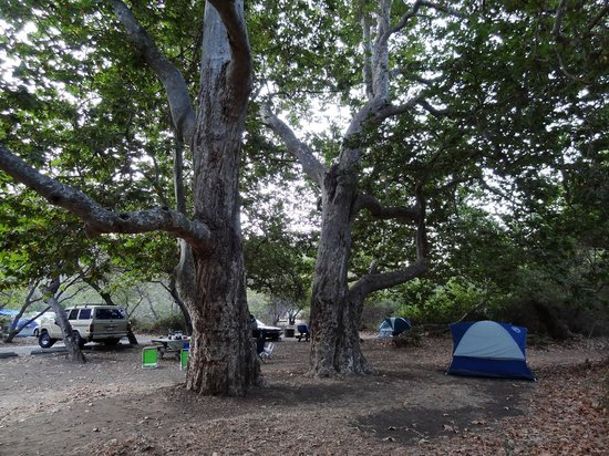 Sycamore Canyon Campground:                   Sites 30, 32