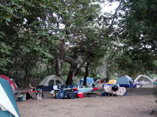 Sycamore Canyon Campground:                   Sites on western loop