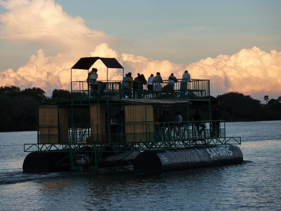 Taonga Safaris - Day Tours: Taonga Safaris