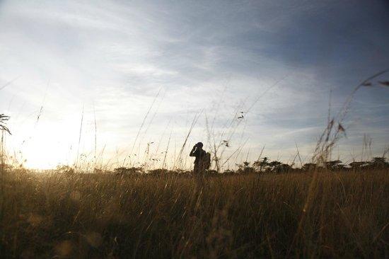 納波少營地 - 全包式照片