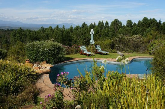 Fynbos Ridge Country House & Cottages:                   Lovely pool with outstanding view