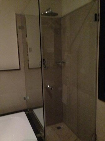 Radisson Blu Hotel, Doha :                   walk in rain shower