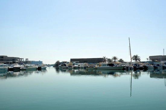 فندق انتركونتننتال: Marina hinter dem Hotel