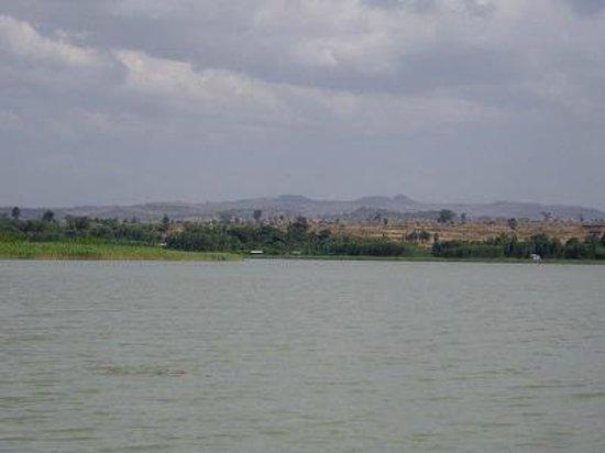 Lake Tana:                   アフリカ第3の大湖